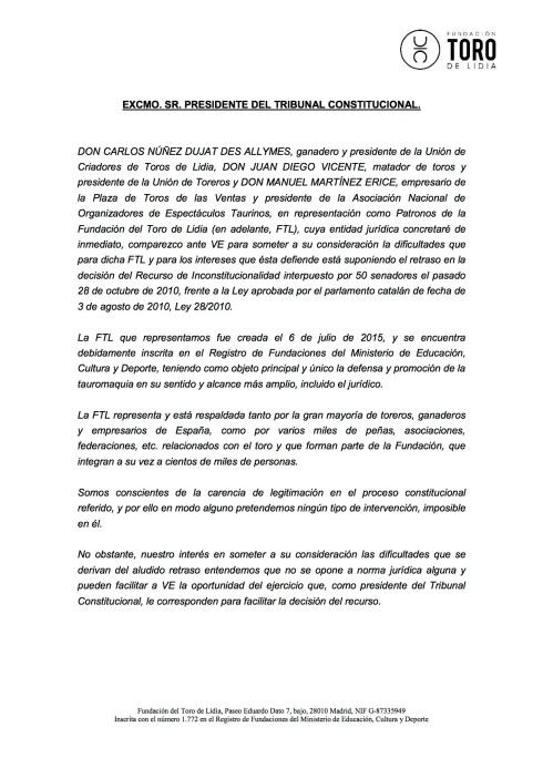 Carta_Tribunal_Constitucional a