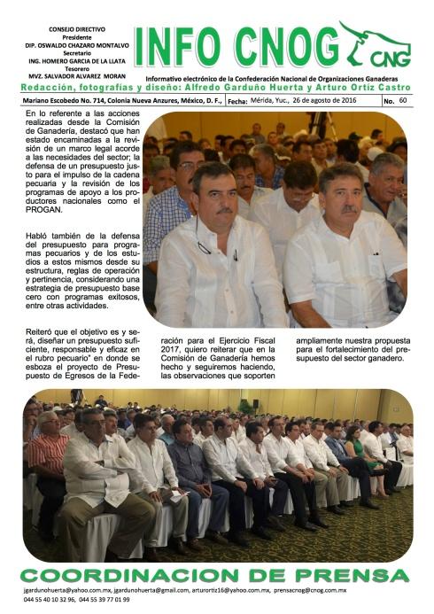 INFO CNOG 60 Informe de actividades OCM 4
