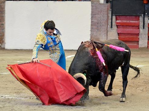 foto_noticia26715