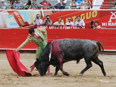 foto_noticia26728