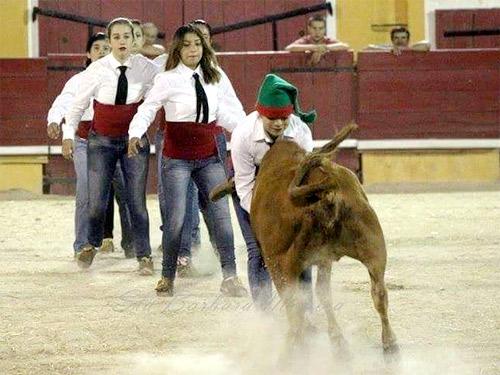foto_noticia27164