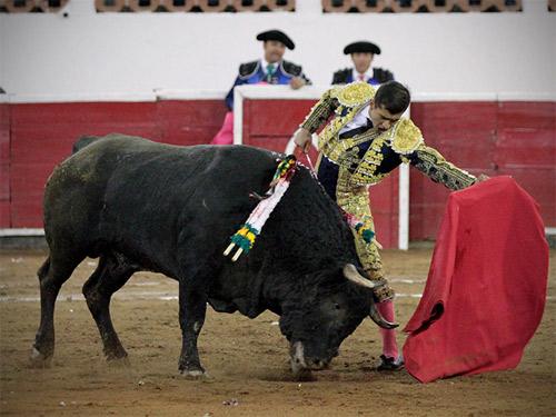 foto_noticia27287