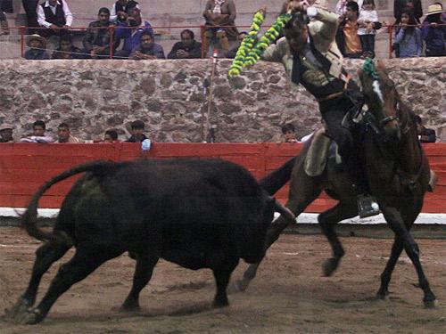 foto_noticia27288
