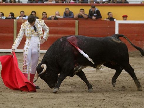 foto_noticia27295