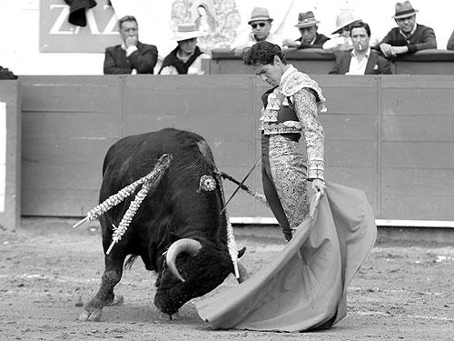 foto_noticia27396